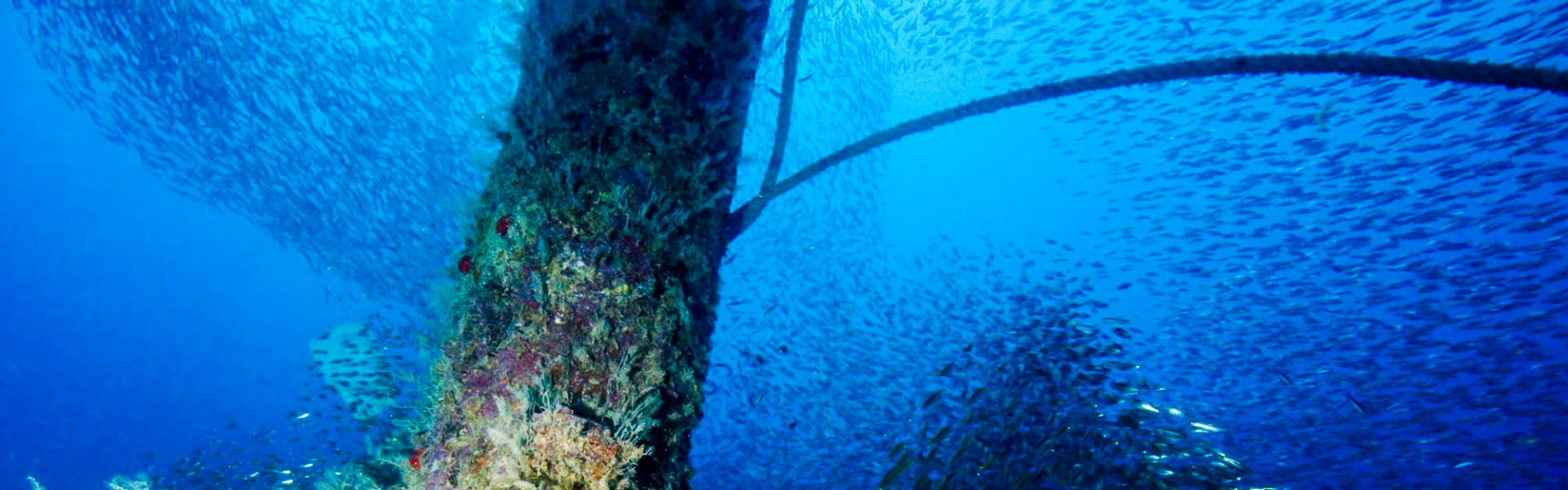 Wreck Diving In Egypt ; Strait of Gubal
