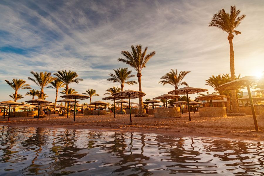 Marsa Alam Things To Do/Holidays