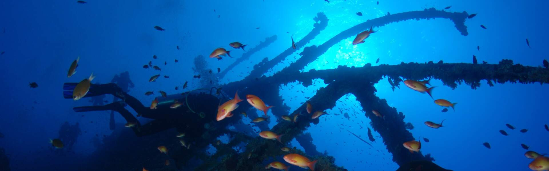 Wreck Diving In Egypt ; Brothers Islands